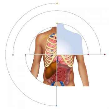 icono_EIR9_anatomofisiologia